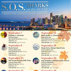 S.O.S--Sharks on the Scene September 2018
