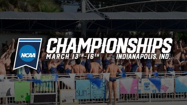 Sharks Swimming Ready For 2019 NCAA Div. II Championships