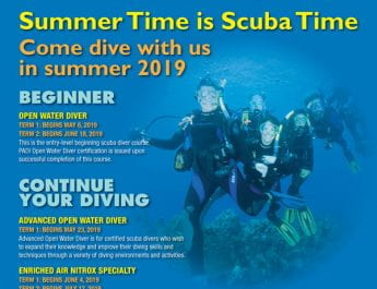 Summer Time is Scuba Time