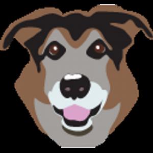 paco app logo