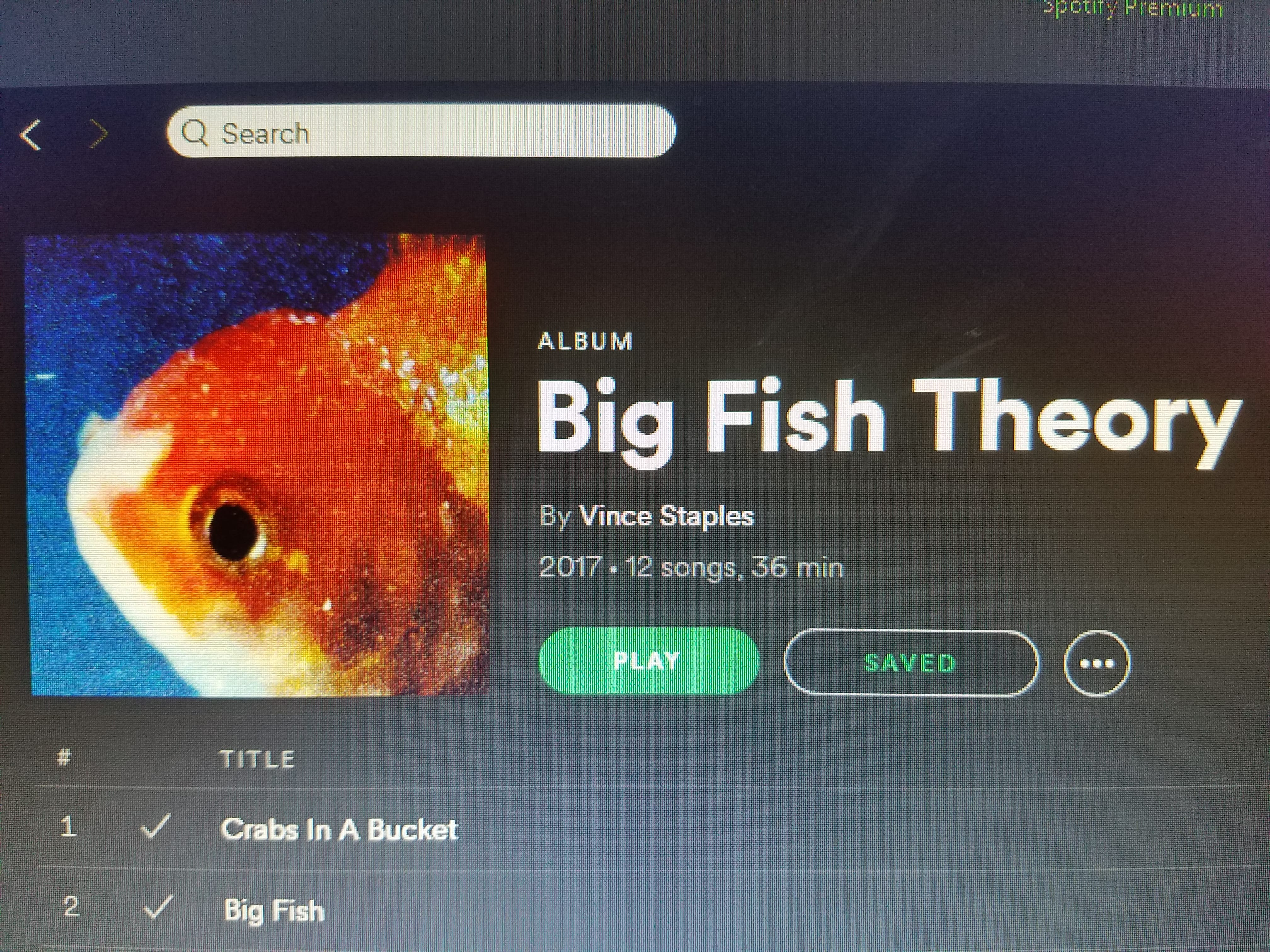 "Big Fish Theory"" by Vince Staples 