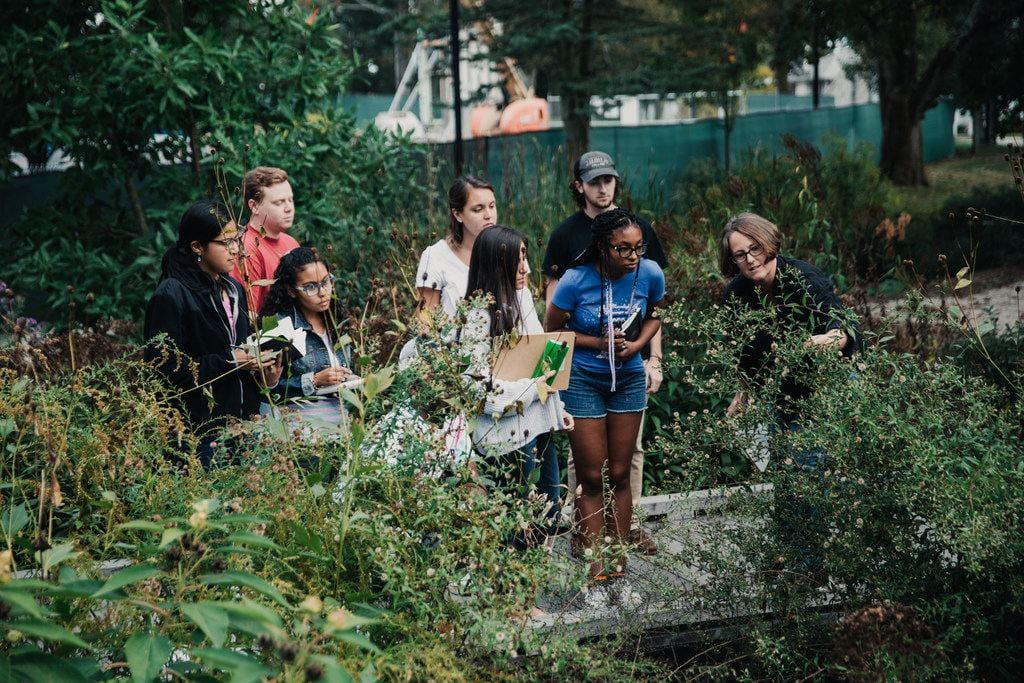 maia bailey and biology students in bioswale