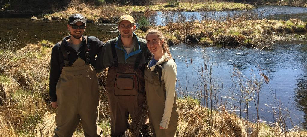 Richardson Lab Students in the Field doing Ecology Research