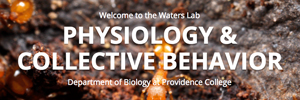 Image for Waters Lab