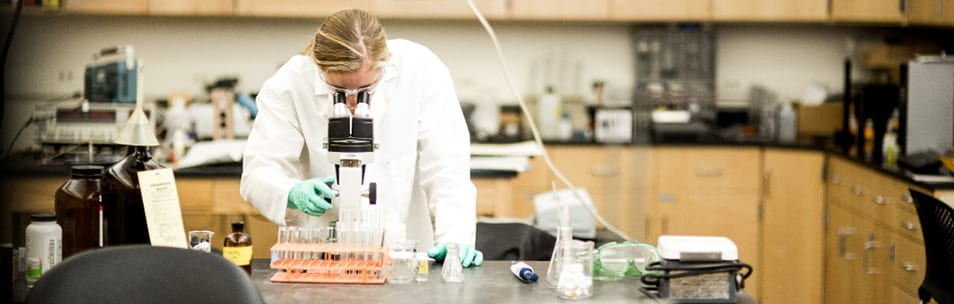 student in lab, health professions