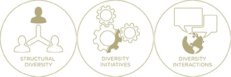 Structural diversity, diversity initiatives, diversity interactions