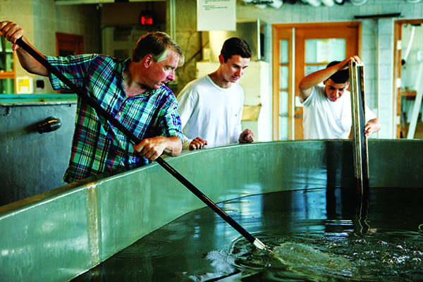 Dr. Joseph A. DeGiorgis, associate professor of biology, shows Andrew Hopkins '16 and Nicholas DeMeo '17 how to catch squid swimming in a tank in the Marine Biological Laboratory's Marine Resources Center.