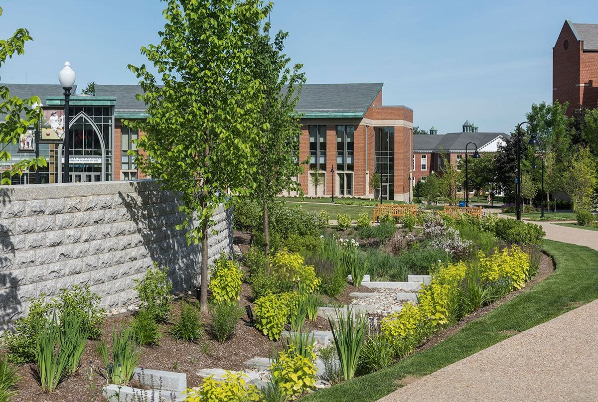 Bioswales, like this one near the new Arthur F. and Patricia Ryan Center for Business Studies, are integral components of campus stormwater management efforts, led by Gale Gennaro.