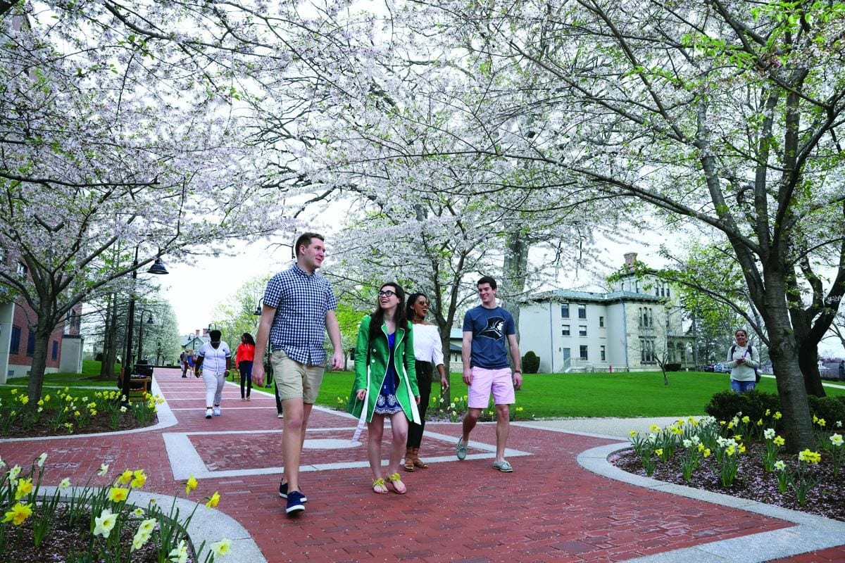 Students enjoy a springtime walk beneath the cherry blossoms. Martin Hall is at right.