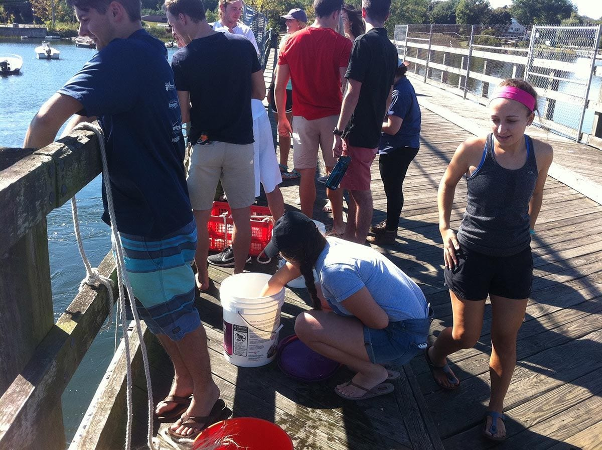 Students in Dr. Jack Costello's Marine Biology course take water samples from a bridge along the East Bay bike path in Barrington.