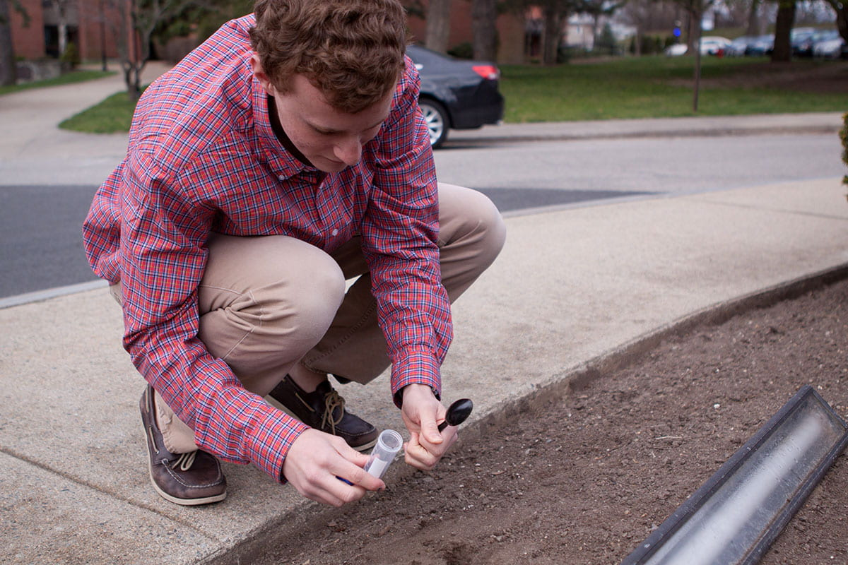 James O'Brien '15 (Fairfield, Conn.) collects soil from campus to isolate phage.