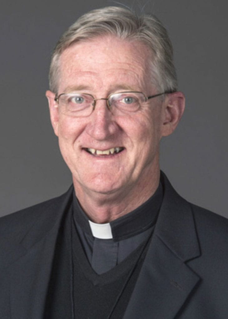 Rev. Wilson Miscamble, C.S.C., is the Rev. Robert J. Randall Distinguished Professor in Christian Culture for 2019-20