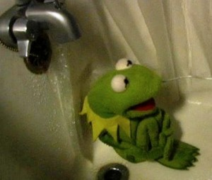 kermit-shower-01