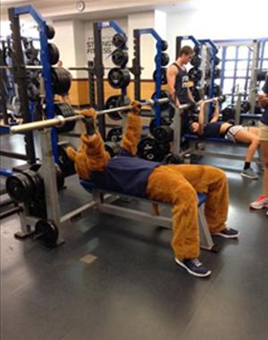 PSU Lion bench pressing at fitness center