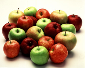Polish-apple-exports