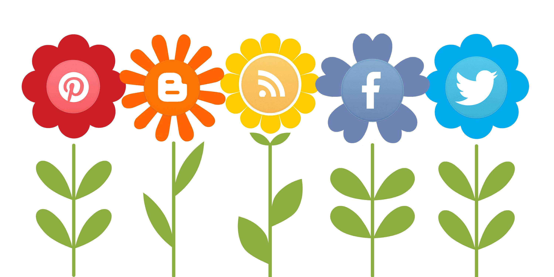cornell universitys steven strogatz social media