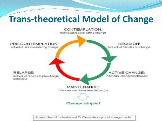 Progress report 1 prochaska and diclementes transtheoretical model of change by ccuart Choice Image