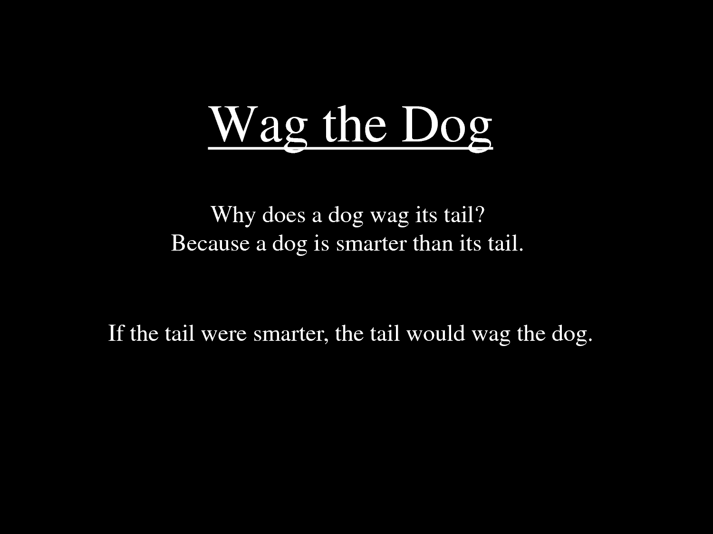 Wag The Dog Answers Jordan Sander Wag The Dog Answers Penn State