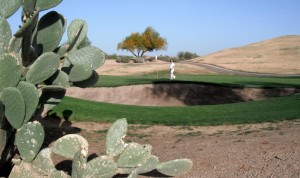 TPC Stadium Course. http://golftodaynw.com/tpc-scottsdale-stadium-course-accolades-for-the-course-with-a-roar/