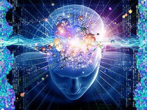 brain_activity2