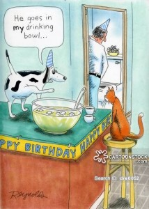 'He goes in my drinking bowl...'