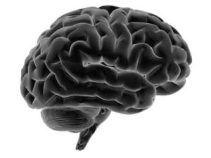 brainblackandwhite