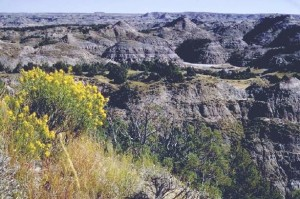 View of the badlands of Theodore Roosevelt National Park
