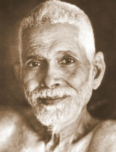 """""""Happiness is your own nature.  Hence it is not wrong to desire it.  What is wrong is seeking it outside, because it is inside.""""          -Sri Ramana Maharishi"""
