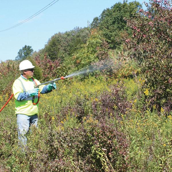 High volume foliar treatment application