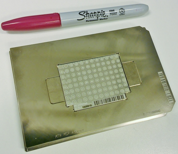 Samples are ready to be analyzed. (MSP 96 target polished steel; Bruker Part No: 8280800)
