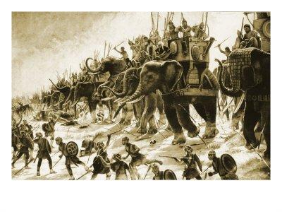 zama elephants and velites