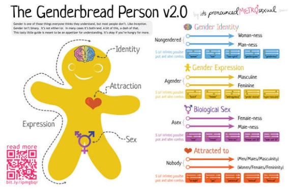 gender-bread-man