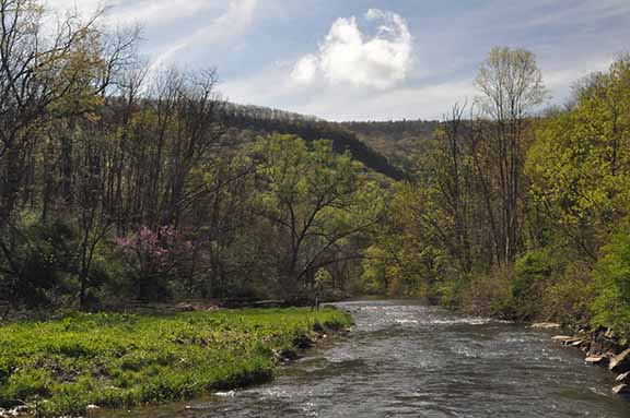 Spruce Creek in spring. By Rob Brooks