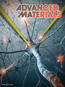 A paper reviewing the state of the art in biomaterials for neural interfaces is featured on the cover of the journal Advanced Materials.