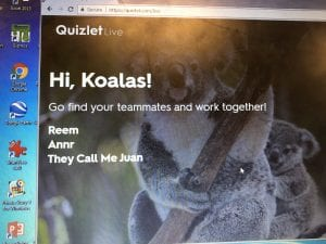 Dividing into team