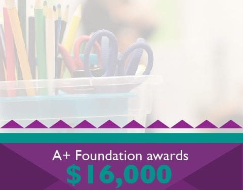 A+ Foundation awards $16,000 in grants to 19 RRISD teachers