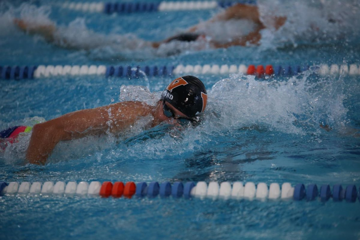 Westwood Horizon: Swim Team Places First for Girls and Boys in Charity Meet