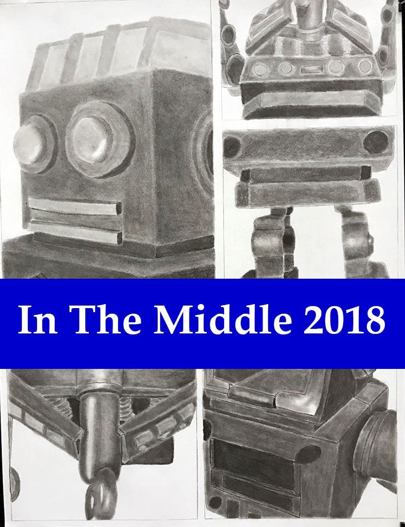 Public invited to In The Middle; The 2018 Middle School Art Exhibition