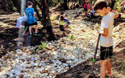 Laurel Mountain Elementary leverages Innovative School Grant, community partnerships to create a model campus for enrichment