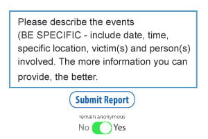 Form field paragraph box instructing users to add as much detail as possible to the report. Be specific with information and include date, time, location, victim(s) and person(s) involved.