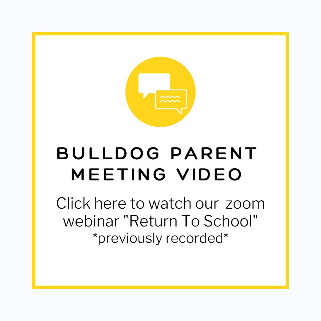 Bulldog zoom video image