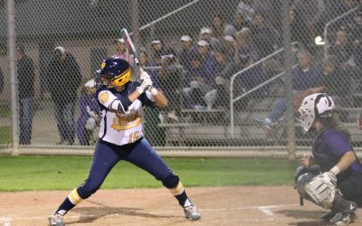 Stony Point Softball Advances To Area
