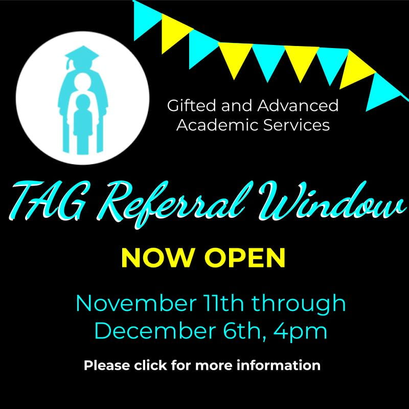 Tag Referral Window is open