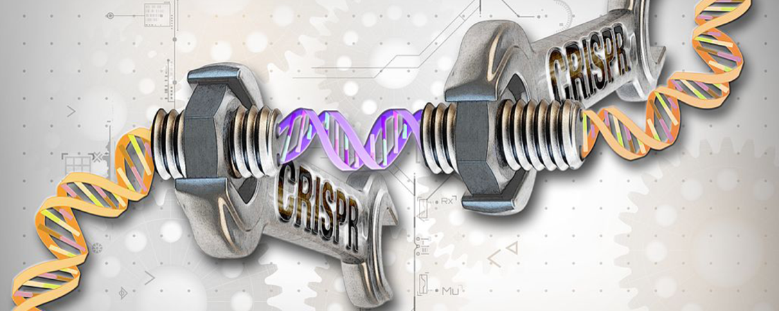 CRISPR Patent Battle