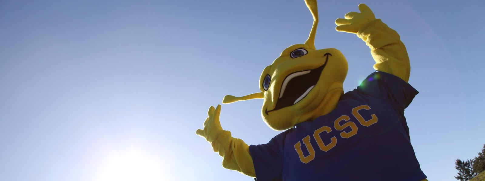 Sammy the Slug - UCSC Mascot