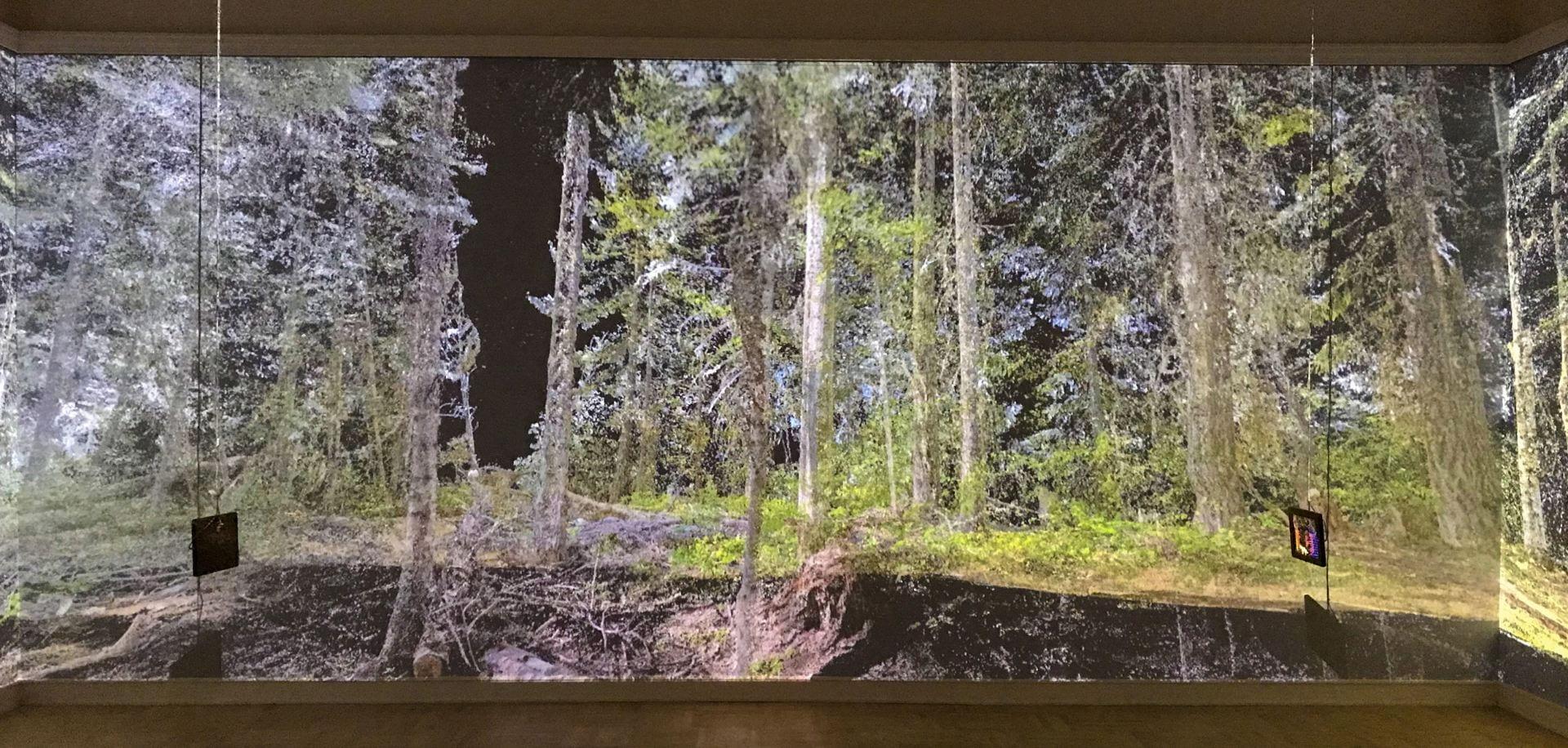 Sin Sol immersive AR Installation at Henry Art Gallery