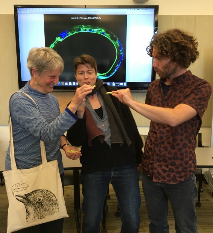 Distinguished Professor Emerita Donna Haraway, Science & Justice Director and Professor of Sociology Jenny Reardon with Science & Justice Visiting Scholar Kim Hendrickx admiring a C. elegans, the elegant see-through worm.