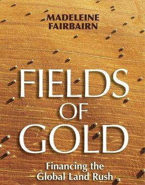 a gold field