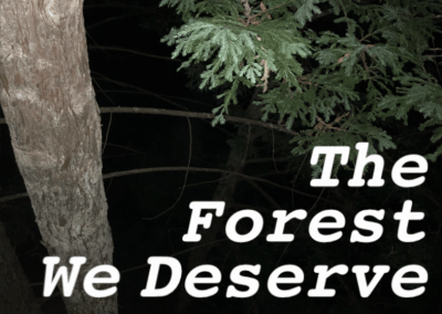 The Forest We Deserve