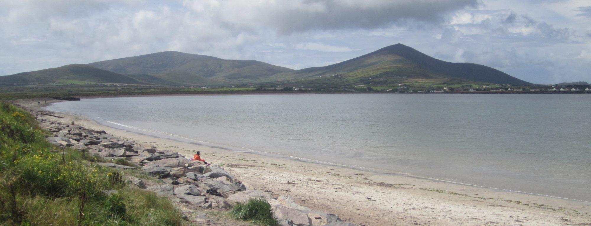 An Ultrasound Investigation of Irish Palatalization